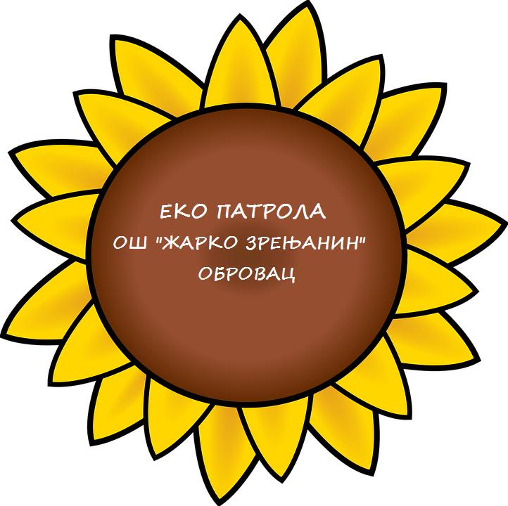 sunflower-304230_960_720